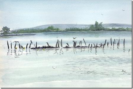 Salt water lake Poole Park